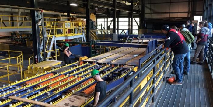 Valorisation du bois de frêne: Retour du projet Recycl'Arbre