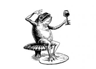 Nénuphar bar: Un 1er indice